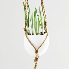 A natural, easy project to bring a little Easter-y charm to your home!