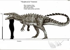 Sinopliosaurus fusuiensis by Teratophoneus Prehistoric Wildlife, Prehistoric Dinosaurs, Prehistoric Creatures, Dinosaur Drawing, Dinosaur Art, Jurassic Park, Prehistoric Timeline, Microscopic Photography, Crocodiles