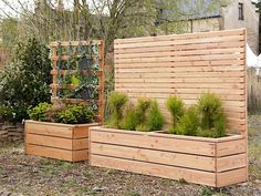 Pflanzkasten als Sichtschutz aus Holz + Rankgitter / Spalier