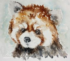 It is Monday and time for me to share a new watercolor. This time I have a portrait of a sweet Red Panda.  I use Winsor & Newton Professional Watercolors & Daniel Smith's extra fine watercolors. The paper I use is 140lb Arches rough or fine.