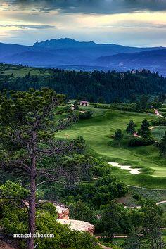 Golf Course! ⛳️