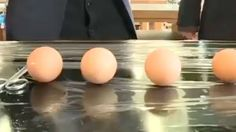 Hatching an Egg Without The Shell