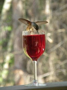 I love this! Hummingbirds will go for anything that is red! Just make sure it is hummingbird nectar in the wine glass rather than wine!! ♥