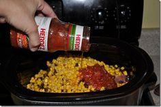 Creamy Tex Mex Chicken-crock pot
