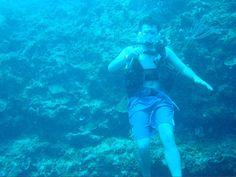channel islands de californie   Fuentes de Información - Buceo San Andres, Colombia