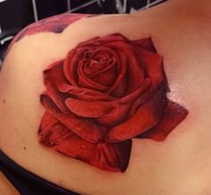 Fresh realistic red rose tattoo