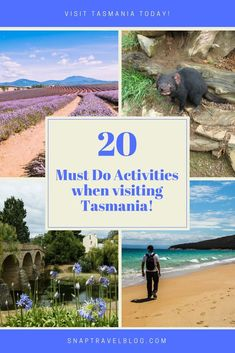 Friends and family are always asking for recommendations on what to do and see in Tasmania. Below is a list of our 20 Must Do Activities in Tasmania. Is your fa Western Australia, Australia Travel, Visit Australia, Amazing Destinations, Travel Destinations, Holiday Destinations, Next Holiday, New Zealand Travel, Beautiful Places To Visit