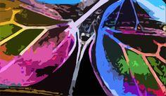 composição 7