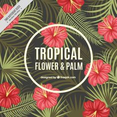 Tropical flowers and palm leaves background Free Vector