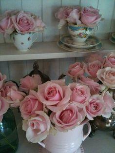 Pink Roses - Yum!!
