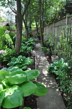 Run a walkway behind the flowerbeds, right next to the fence using some recycled concrete pavers. When the garden leafs out, you barely see the hidden walkway and yet it gives her an easy way to weed the back of the garden