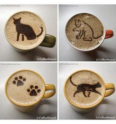 coffee art: cats