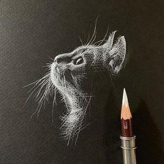 Kay Lee Black Paper Drawing, Black And White Drawing, Black And White Illustration, White On Black Art, Kunst Poster, Cat Sketch, Cat Aesthetic, Aesthetic Black, White Pencil
