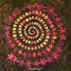 Nature Inspired Crafts For Kids Land Art 46 Ideas Mandala Art, Mandala Nature, Mandalas Painting, Flower Mandala, Flower Art, Land Art, Ephemeral Art, Forest Art, Nature Crafts