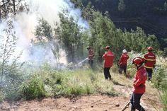 Impactos negativos dos incêndios podem diminuir se previsões melhorarem