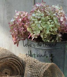 The love that binds