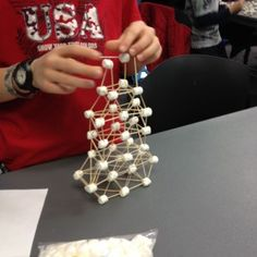Marshmallow Engineering: A School-Age STEAM Program   ALSC blog (Photo by Amy Koester)