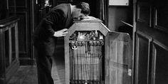 31 agosto 1891: Edison brevetta il Kinetoscopio, il primo cineproiettore