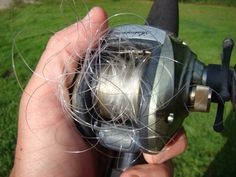 Take Me Fishing | Blog | Professional Overrun: 7 Tips for Preventing a Bird's Nest - Take Me Fishing