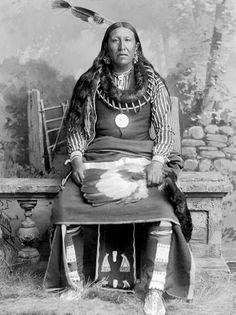 Pawnee Chief