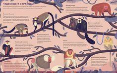 Отличный подарок в год обезьяны! . Бумажная. Читать отзывы и скачать главу.