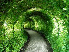 Alnwick Castle Gardens in Northumberland, England
