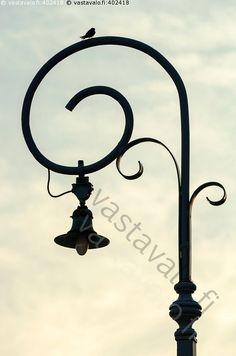 Pääsky lampulla - eläin lintu pääsky lamppu valaisin kaari kiekura spiraali katulamppu katuvalo vanha siluetti
