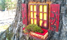 Gnome home - up close window with shutters and window box.