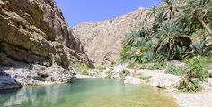 David Gabis Photography Blog: Swimming in the river of Wadi As Shab, Sultanate o...