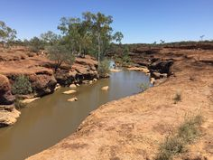 Hell Hole Gorge National Park is a remote park in the arid mulga lands of south-western Queensland. National Park Camping, National Parks, Off Road Camper, Free Entry, Rock Pools, Queensland Australia, Wild Flowers, Trip Advisor, Westerns