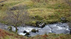 Chapelhope, St Mary's Loch, Scottish Borders