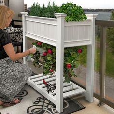 The Urbanscape Planter is an attractive, accessible solution for small spaces or reduced mobility allowing you to grow a high yield in a small space; ingeniously designed to allow tomatoes, peppers or