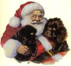 Santa & 2 beautiful Newf Pups
