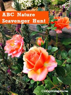 Looking for scavenger hunt ideas for kids? Try an ABC Nature Hunt outside!