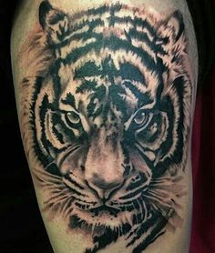 Tigre tatto