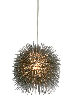 Sea urchins are simple, geometric-shaped creatures with telltale barbs that inhabit all oceans. They are also creatures that inspire poetic words and light fixtures alike.