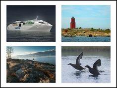 Vaasapediassa on oma kategoria Merenkurkkua ja Merenkurkun luontoa varten.   Voit itse täydentää kategoriaa kuvilla ja teksteillä. http://www.vaasalaisia.info/vaasapedia