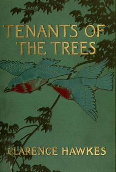 Clarence Hawkes, Tenants of the Trees (1907) Illustrations by Louis Rhead