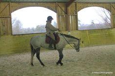 Stage ACTEF enseignants 14/15 décembre : jour 2 mardi 15, atelier à cheval avec Patrice Franchet D'Espérey