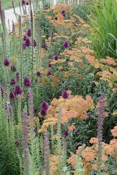 Elegant Herbstlicher Garten mit Gr sern und Fetthenne Sedum Wohnen und Garten Fotomunity