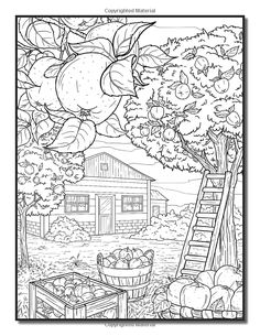Country Farm Coloring Book: An Adult Coloring Book with Charming Country Life, Playful Animals, Beautiful Flowers, and Nature Scenes for Relaxation Fall Coloring Pages, Printable Coloring Sheets, Printable Adult Coloring Pages, Coloring For Kids, Coloring Books, Forest Coloring Pages, Colorful Pictures, Country Farm, Country Life