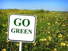Heath - Environment Unit (teach around Earth Day) - What's So Great About Going Green?