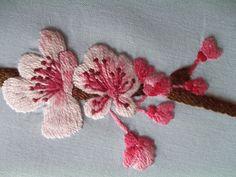 cherry blossom - flor de cereja