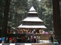 Manali Special Tour with volvo:Pearls Tourism|  North India holidays packages