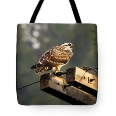 Tote Bag featuring the photograph Blanche's Osprey 2 by Michael Johnk