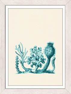 Antique Illustration Turquise  Coral forms   by seasideprints, $12.00