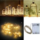 2M Warm White 20 LED String Copper Wire Fairy Xmas Lights Wedding Party Decor