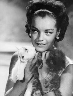 Romy Schneider mit Katzen