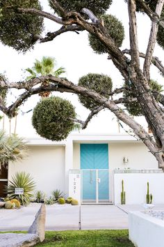 Take a self-guided Palm Springs Door Tour to check out all the bright & colorful modern front doors! Midcentury Modern Front Door, Mid Century Modern Door, Mid Century Exterior, Palm Springs Houses, Palm Springs Style, Modern Exterior, Exterior Design, Front Door Plants, Front Doors