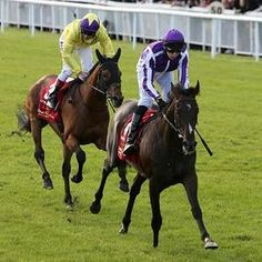 Camelot holds off Born To Sea in the Irish Derby at The Curragh, completing a sweep of England's Derby and Two Thousand Guineas for the son of Montjeu. He aims next to become the first English Triple Crown winner since Nijinsky in 1970. Trainer Aidan O'Brien now has won 10 runnings of the Irish Derby, including the last seven in a row. With his son Joseph aboard, they became the first father-son duo to win the Irish Derby.
